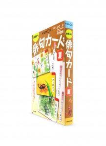 Карточки от Kumon: Хайку. Лето