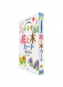 Карточки от Kumon: Картинки из природы. Цветы и деревья