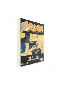 Fullmetal Alchemist / Стальной алхимик (09) ― Манга на японском языке