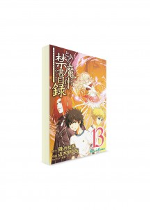 A Certain Magical Index / Индекс Волшебства (13) ― Манга на японском языке