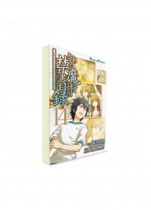 A Certain Magical Index / Индекс Волшебства (14) ― Манга на японском языке