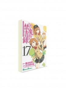A Certain Magical Index / Индекс Волшебства (17) ― Манга на японском языке