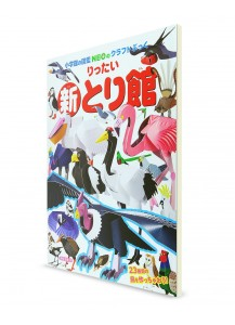 Крафтбук с 3D-фигурами Zukan NEO от Shōgakukan (новая версия) —Птицы—