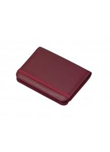 Оригинальный кейс Casio для линейки электронных словарей EX-word (красный)
