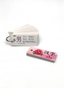 Ханьцзы Ка 1: карточки для изучения 110 базовых китайских иероглифов